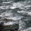 Stock Video: Shot of river whirlpool