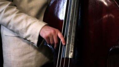 Bass player — Stock Video