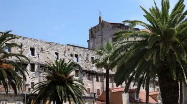 Shot of an old building in Split sourrounded with palms — Stock Video