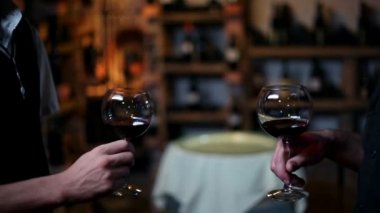 Two people toasting with red wine — Stock Video