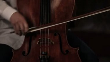 Bass and cello player — Stock Video