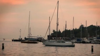 Shot of sailing boats docked at the port in Portorose during the sunset — Stock Video