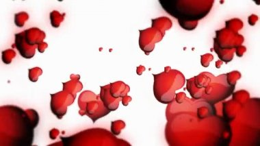 Floating red hearts on white backgroun animation for Valentine's day — Stock Video