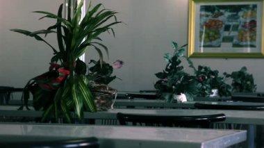 Ancora tiro di tavoli decorati in un'aula — Video Stock