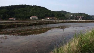 Shot of part of salt pans Secovlje Slovenia — Stockvideo