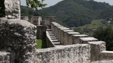 Old castle near Celje — Stock Video