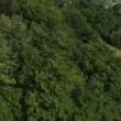 Panorama slide shot from helicopter representing hills covered with green forest — Stock Video