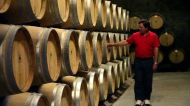 Photo de l'homme en vérifiant les fûts dans la cave à vin — Vidéo
