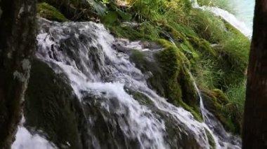 Small waterfall — Stock Video