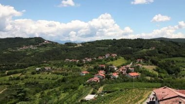Panoramic shot of willage near Gorizia with a lot of vineyards — Stock Video