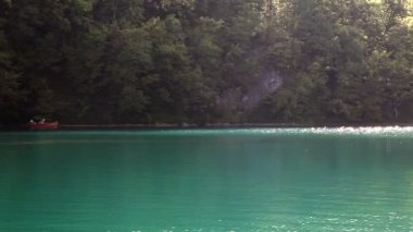 Shot of beautiful landscape in Plitvice national park, made from the boat — Stock Video