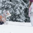 Two girls enjoying on snow in winter time — Stock Video