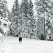 Senior woman walking in winter idyllic surroundings — Stock Video
