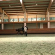 Big hall for training young girl riding horse for equestrianism — Stock Video #28409231