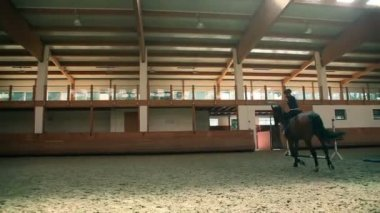 Big hall for training young girl riding horse for equestrianism — Vídeo de Stock