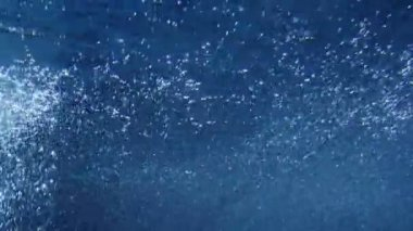 Shot of pool water from underwater — Stock Video