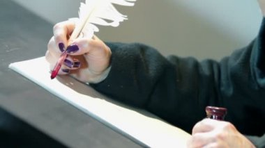 Woman writing in castle guest book with feather pen — 图库视频影像