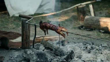 Whole rabbit roasting on barbecue in camp — Stock Video