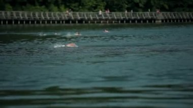Wide shot of swimmers in lake with viewers in background — Stock Video