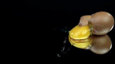 Egg falls, breaks and spills on black background — Stock Video