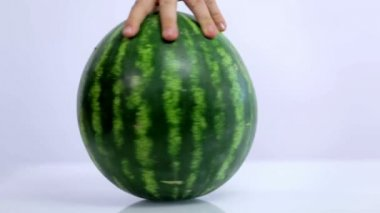 Rolling around watermelon on white background — Stock Video