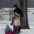 Kid falls when family tries to walk on large skis on the snow — Stock Video #38474419