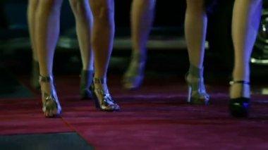 Long women legs and french bulldog wondering around — Stock Video
