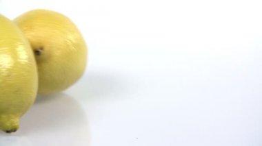 Limões grandes rolar pela tela em câmera lenta — Vídeo Stock