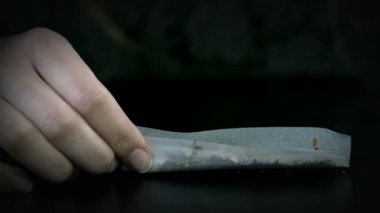 Raising rolling paper with it's contents and starting to roll a joint — Stock Video