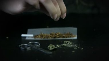 Scatering marihuana over the tobacco on the rolling paper — Stock Video