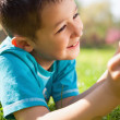 Stock Photo: Little boy using digital tablet