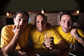 Friends Watching Favorite Team At Bar — Stock Photo