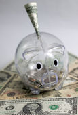 Piggy bank with one dollar — Zdjęcie stockowe