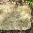 Stepping Stone Quote — Stock Photo