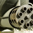 Stock Photo: Thunderbolt II (A-10) Gattling Gun