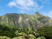 Oahu Pali — Stock Photo
