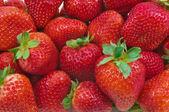 Montón de fresas — Foto de Stock