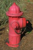 Red Fire Hydrant — Stock Photo