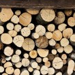 Stock fotografie: Wood stacked in pile