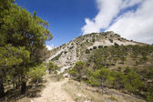 Country road in the hills with mountain rock in Alicante, Spain — Stock Photo