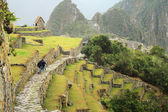 Machu picchu, cuzco, peru, novas sete maravilhas do mundo — Fotografia Stock