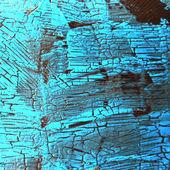 Texture14 — 图库照片