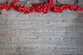 A bunch red ashberry on the linen fabric — Stock Photo