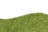 The bright green grass on a white background — Stock Photo
