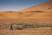 Morocco Desert Dunes — Stock Photo