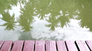 Relaxing on wooden bridge beside the river — Stock Video