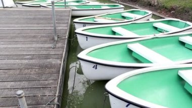 Rental rowboats in the park — Stock Video