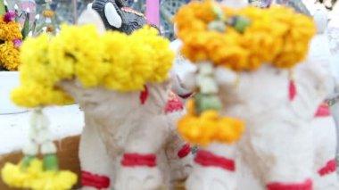 Små djur dockor framför buddha staty — Stockvideo