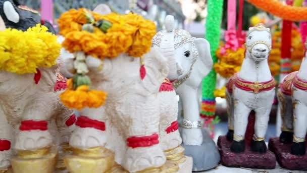 Small animal dolls in front of Buddha statue — Vidéo