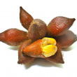 Stock Photo: Zalacca or salak fruit